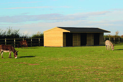 field-shelters-for-horses (4)