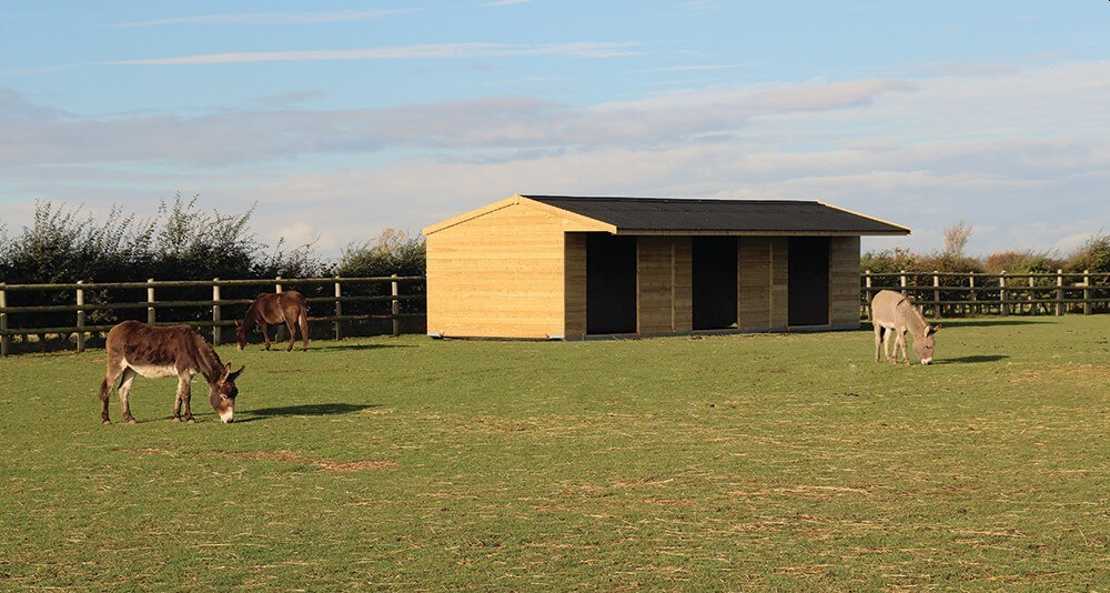 Field shelters for horses